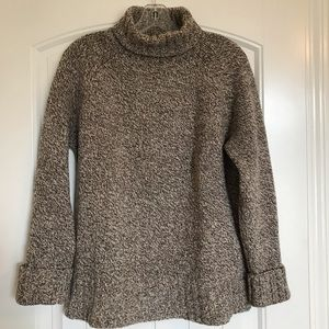 Express Chunky Turtleneck Sweater